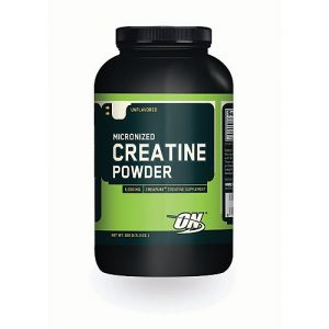 ON (Optimum Nutrition) Microionized Creatine-0