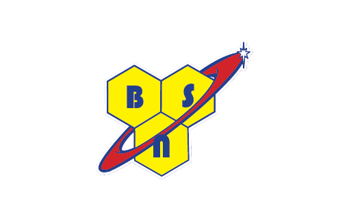 BSN Logo Acacia World